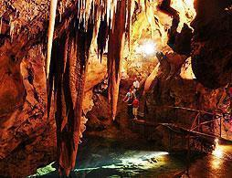 Jenolan Caves & Blue Mountains