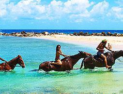 Horseback Ride and Swim - Ocho Rios