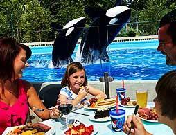 Dine with Shamu at SeaWorld®