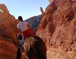 Horseback Riding in the Valley of Fire -