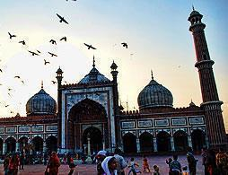 Full Day City Tour of Delhi