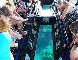 Grand Cayman Glass Bottom Boat & Snorkel