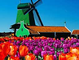 Windmills, Clogs and Cheese Tour