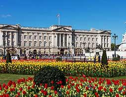 Buckingham Palace & Afternoon Tea