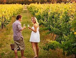 Margaret River Luxury Wine Tour