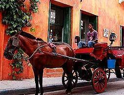 Horse & Carriage Historic City Evening Tour