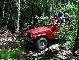 Jeep Tour of Tijuca Forest