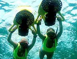 Power Snorkel Adventure at Snorkel Park