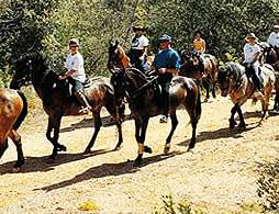 Horse Riding - Menorca