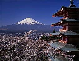 Mt Fuji & Hakone Tour