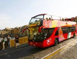 Sightseeing Bus Tour 24 hrs