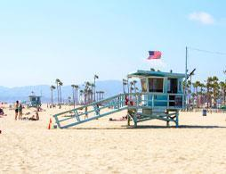LA City tour: Celebrity Homes and California Beaches