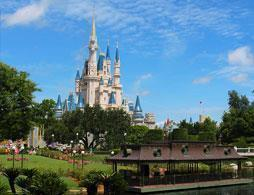 Walt Disney World Resort 14 days for the price of seven