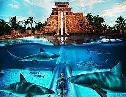 Aquaventure, Water Park