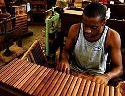 The Legend of Habana Cigars